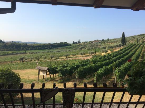 Agriturismo Costa degli Ulivi: Utsikt från balkongen.