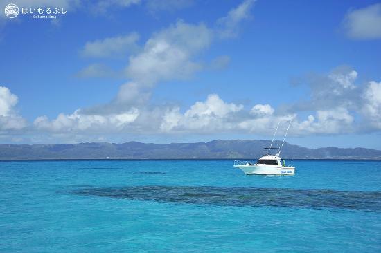 はいむるぶし, チャーターボートで八重山の海を遊び尽くすことができます。