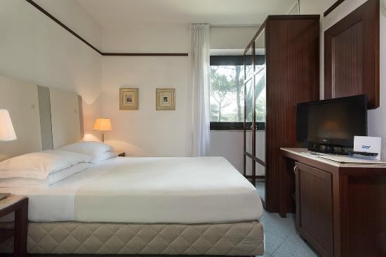 Hotel Bellevue & Resort : Basic Room