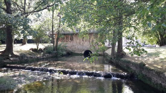Chateau de Gilly: A beautiful stream inside the property