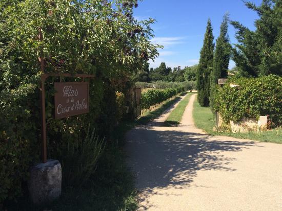 Mas de la Croix d'Arles: photo2.jpg