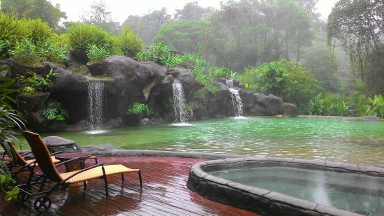 Giardino con laghetto for Cascate e laghetti da giardino