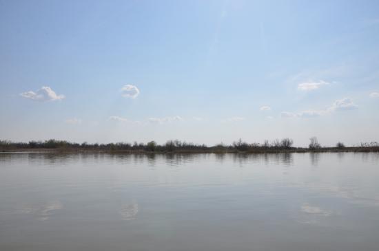 Vilkovo, Ukraine: Дельта Дуная