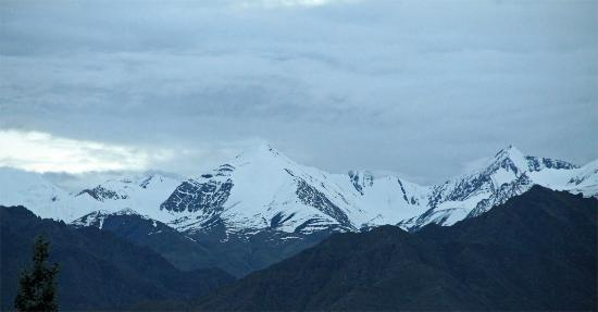 The Silk Route Ladakh : View from the terrace