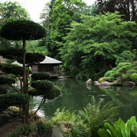 Japanischer Garten (Japanese Garden) - Picture of Japanischer Garten ...
