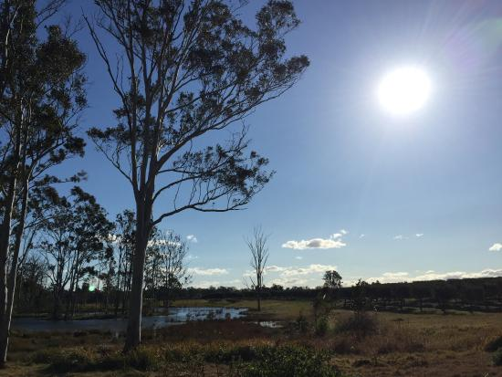 Lovedale Cottages : photo2.jpg