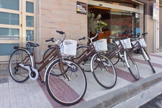 B&B El Pekinaire: Bicicletas para ti