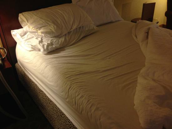 Elegant Hilton Garden Inn Amarillo: Awful Bed Gallery