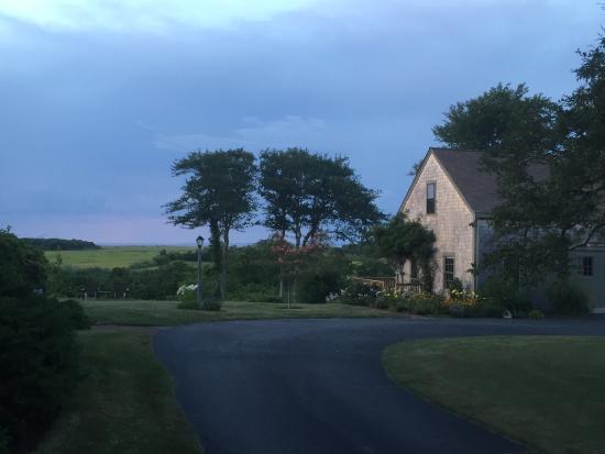 The Ruddy Turnstone : photo2.jpg