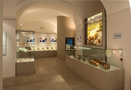Museo Archeologico del Casentino Piero Albertoni