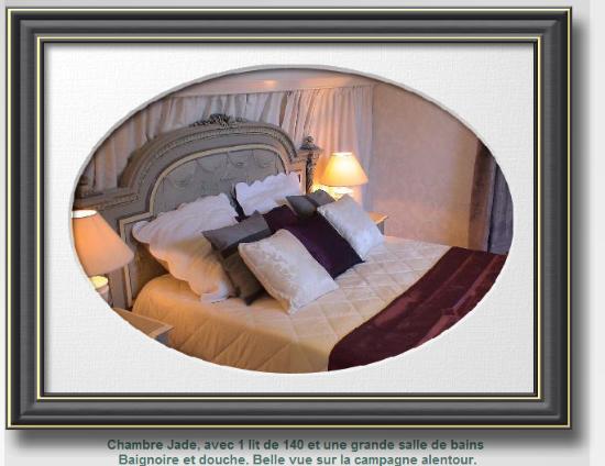 Donzy, Франция: Chambre JADE