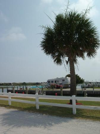 Cedar Point, NC: RV Sites