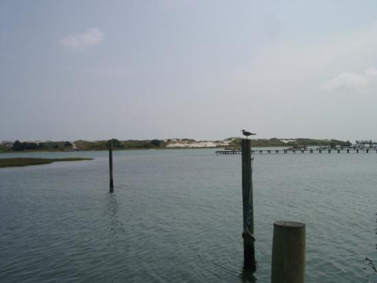 Cedar Point, NC: Water views