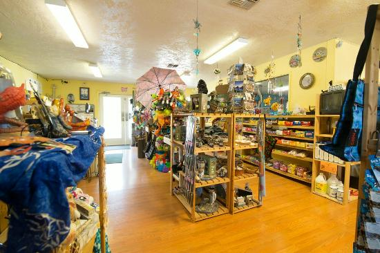 Whalers Rest RV & Camping Resort : Store