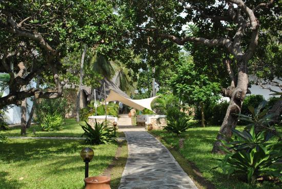 Kola Beach Resort: Welcome at Kola Beach Resort