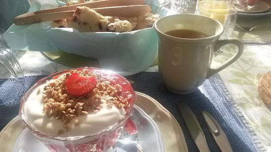 Country Stiles Bed & Breakfast : Fresh strawberry puree with cranberry scones.