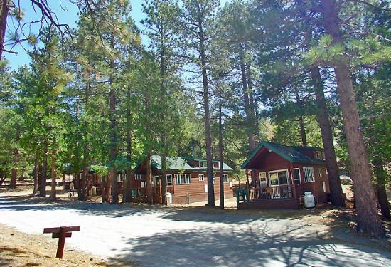 Idyllwild, CA: Cabins
