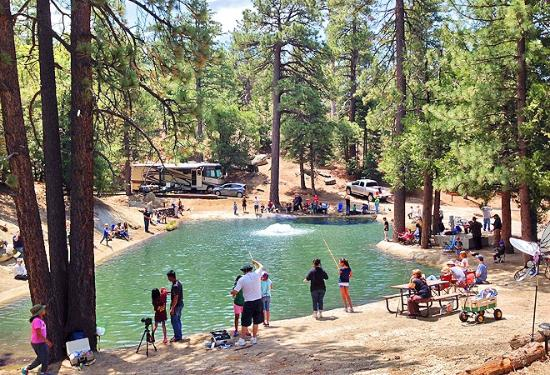 Idyllwild Rv Resort Updated 2017 Campground Reviews