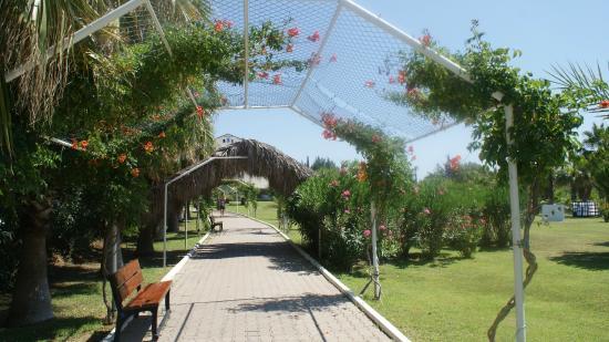 Sural Resort: ogród