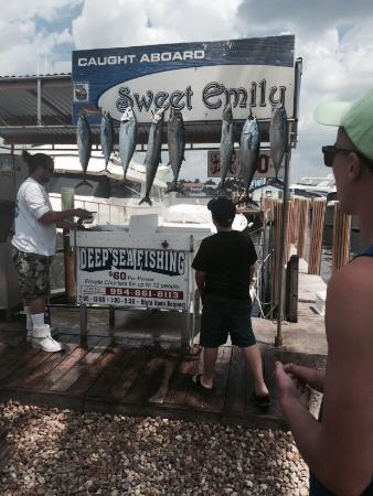 Sweet Emily Charter Fishing Boat