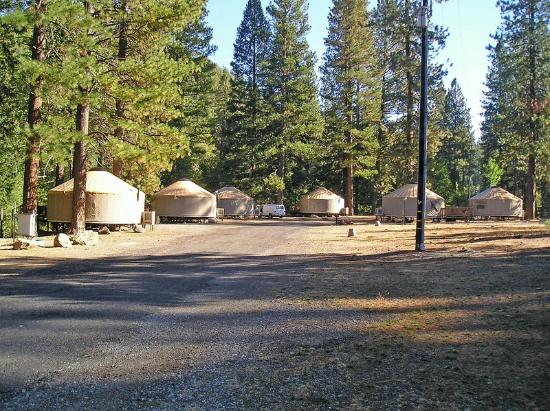 Yosemite Lakes RV Resort: Yurts