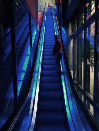 Blue Man Group : photo1.jpg