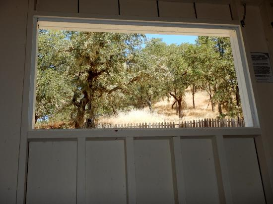 Ukiah, CA: looking out the window from your interior tub