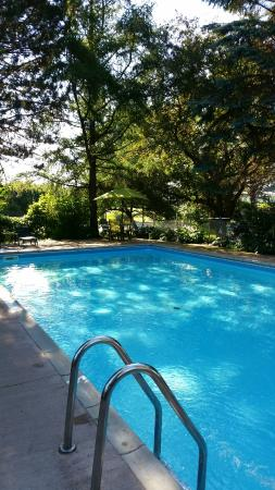 Suburban Motel: Outdoor Pool