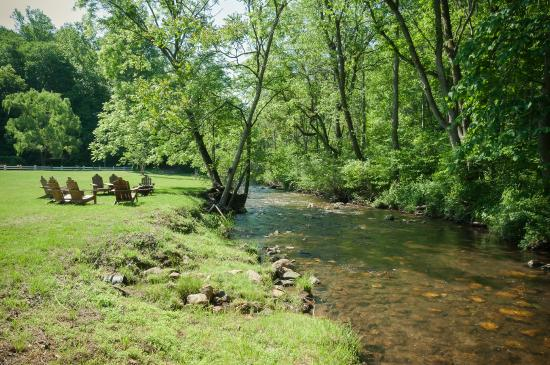 Woolwine, VA: Fish For Trout