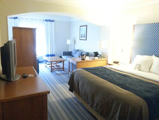 Comfort Inn & Suites Savannah Airport: Our room.