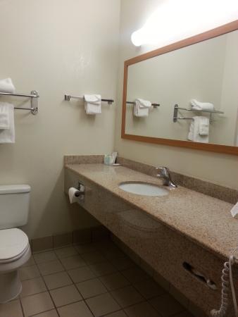 Comfort Inn & Suites Savannah Airport: Spacious counter top.