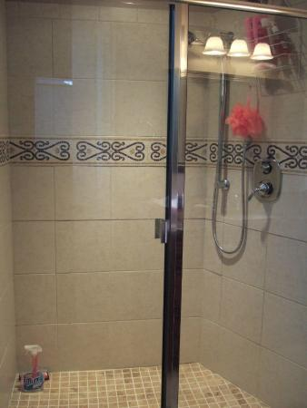 Eagle Rock Bed and Breakfast Chemainus: Repertoire Shower