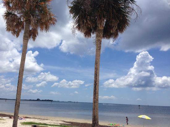 Perry, Φλόριντα: Keaton Beach Palm Trees