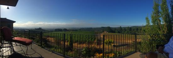 Black Walnut Inn & Vineyard: The view from our balcony
