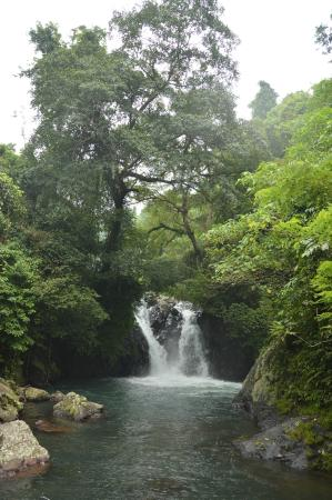 Singaraja, Indonesia: Kroya Waterfall