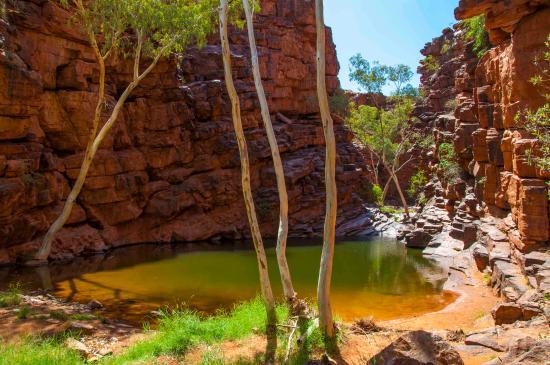Red Centre, Australien: John Hayes rockhole