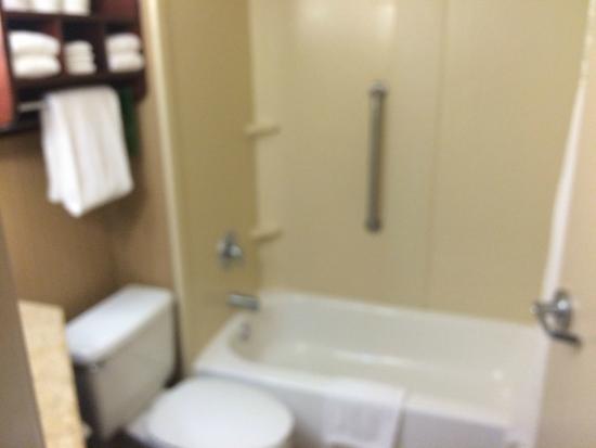 Hampton Inn Dallas / Addison: bath