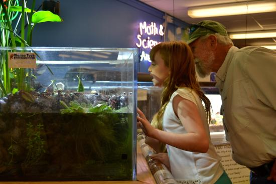 Grand Junction, CO: Grandpa and granddaughter viewing amphibians.