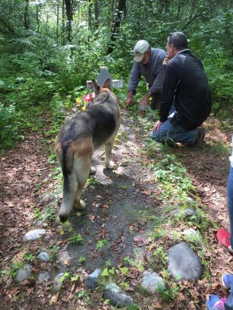 Alaska Wilderness Adventure: photo8.jpg