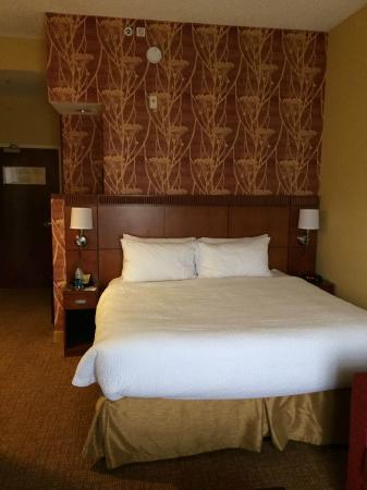 Courtyard Tampa Oldsmar: King bed