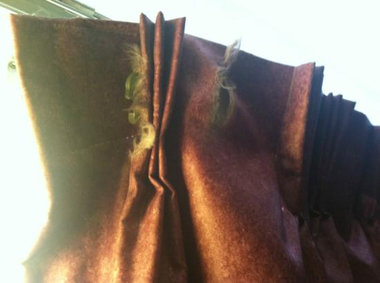 Superb Red Roof Inn Victorville: Dirty Filthy Curtains And Very Old