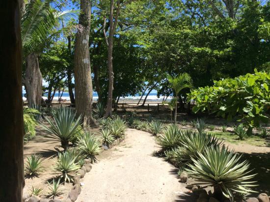 Villas Hermosas: View from honeymoon suite porch