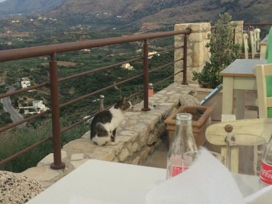 Exopoli, Griekenland: photo2.jpg