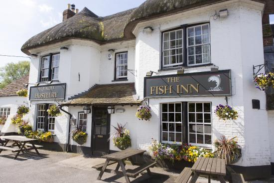 The Fish Inn: A Traditional 16th Century Thatched Inn