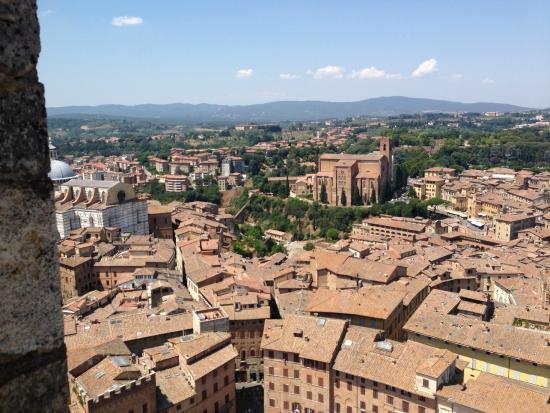 Castello di Saltemnano: Siena