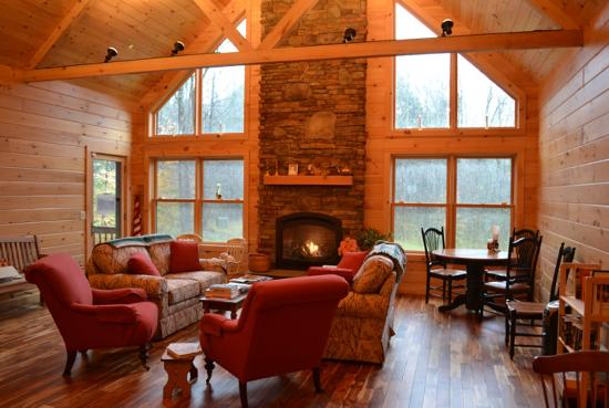 Log Cabin Bed & Breakfast : The stunning lounge