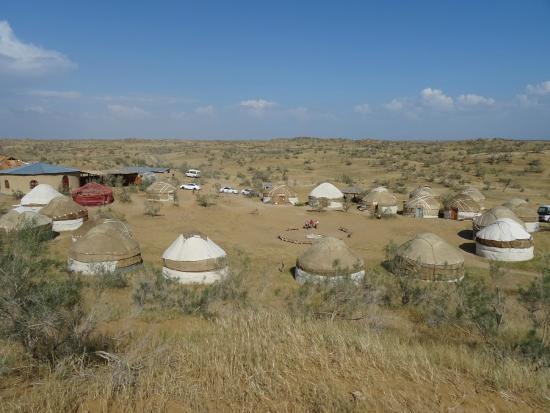 Yurt Camp Safari照片