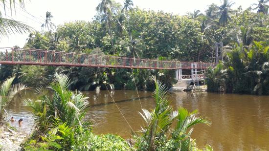 Balangay Shrine Museum: Hanging bridge leading to the the area where the first mass in the Philippines was supposedly he