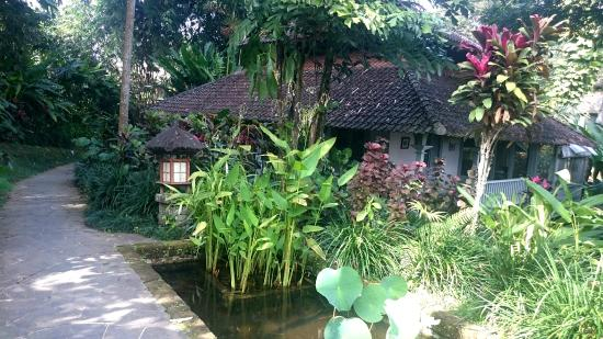 show user reviews taman bebek villas sayan ubud bali