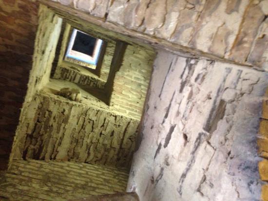 Siena, Włochy: photo2.jpg